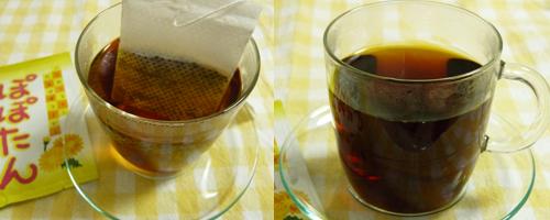 tealife2.jpg
