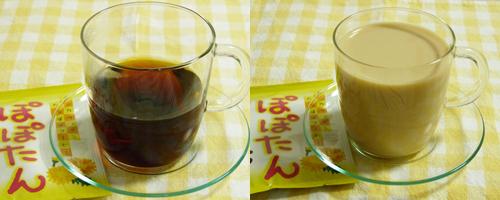 tealife3.jpg